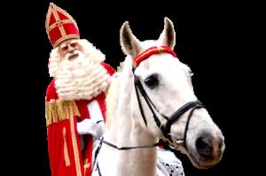 3602827-sinterklaas-paard