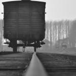Auschwitz train. Photo by MaximilienM (2011)