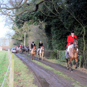 Boxing Day Hunt. Photo by Bob Jones (2009). PD-Creative Commons Attribution – Share Alike 2.0. Wikimedia Commons.