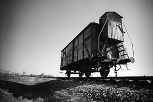 Transport rail car used to deliver victims to Auschwitz II-Birkenau. Photo by Bill Hunt (2011). PD-Creative Commons Attribution-Share Alike 2.0 Generic. Wikimedia Commons.