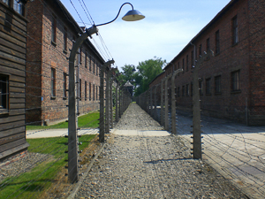Partition fence between the prison camp (right) and the administration area (left) in Auschwitz I. Photo by Davejblair (2008). PD-Creative Commons Attribution-Share Alike 3.0 Unported. Wikimedia Commons.